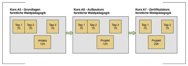 Aufbau des Zertifikatslehrgangs forstliche Waldpädagogik