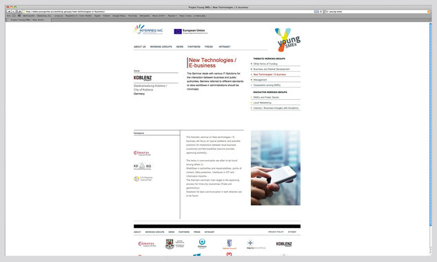 Web YoungSmes