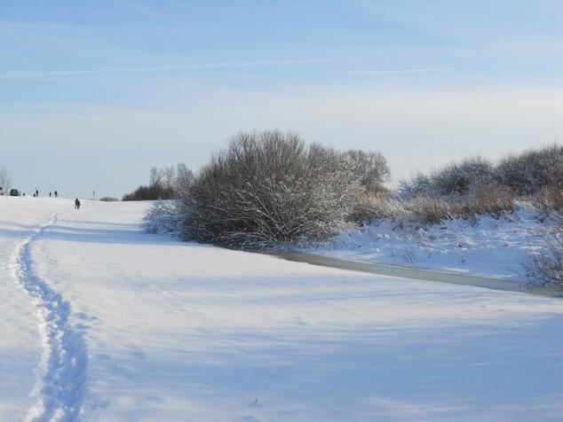 Winterspaziergänge