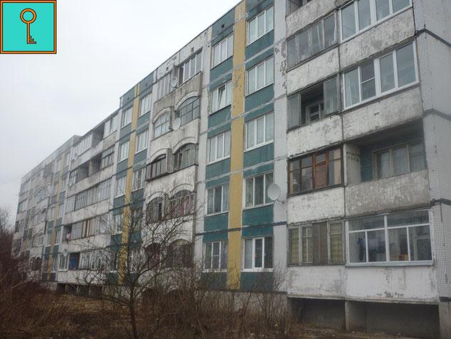 Поселок Торфяное. Дом №41