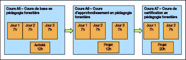 Structure formation certifiante en Pédagogie forestière