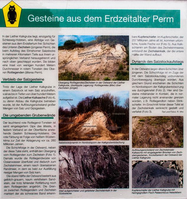 Bild: Tafel mit Gesteine aus dem Erdzeitalter Perm