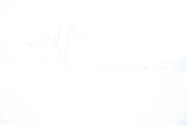 white: sossusvlei dead vlei namibia - appr. 6 pm, d810, 14mm, f8, 59 sec., iso 100