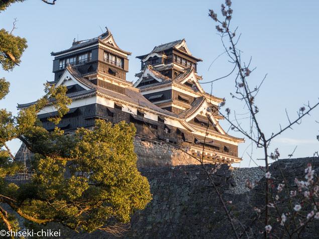 加藤神社から間近に見る、大天守・小天守