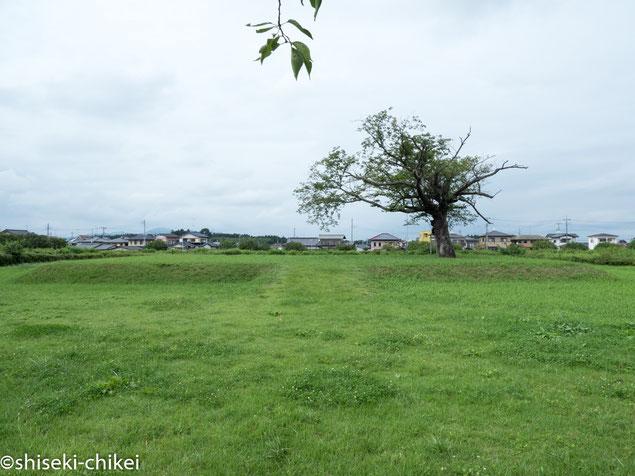 国分尼寺跡はかなり広い