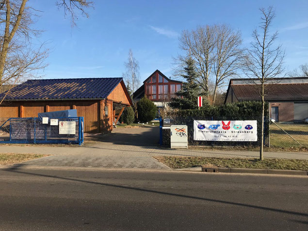 Tierarztpraxis Strausberg Tierarzt Heiko Irmscher - Parkplätze und Praxiszugang