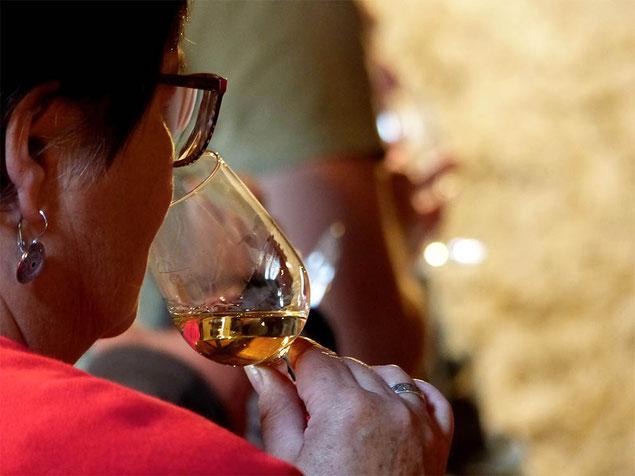 Dégustation au Musée de la vigne et du vin d'Anjou