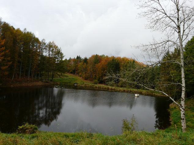 L'étang de Lachaud à Saint-Yrieix le Déjalat