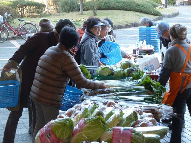 新鮮野菜が人気