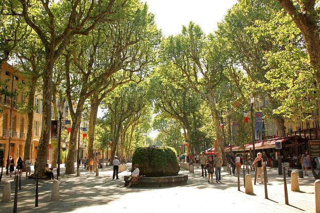 Le Cours Mirabeau par une belle journée d'été (source: Andrea Schaffer)