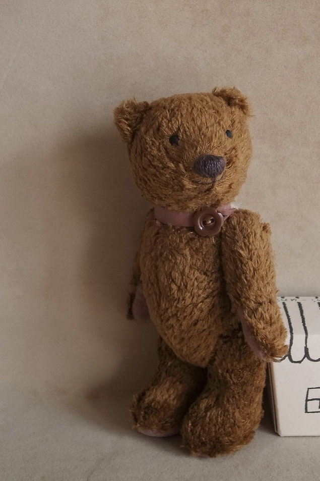 fairysaddle teddybear