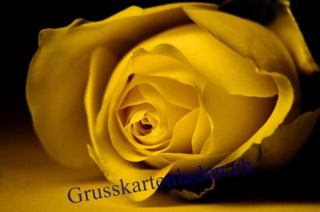 Rose Hochzeitskarte
