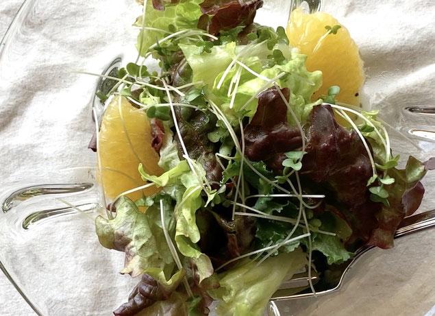 キウイ 野菜 オンライン料理教室 味噌汁 河内晩柑 宇和ゴールド