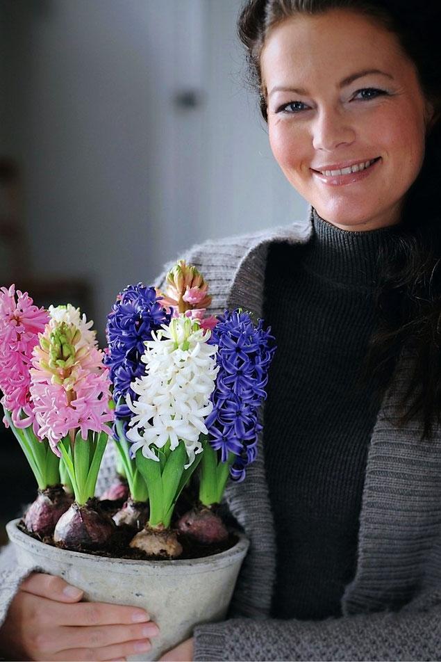 Frühlingsgrüsse Blumenladen Olten | Obergösgen