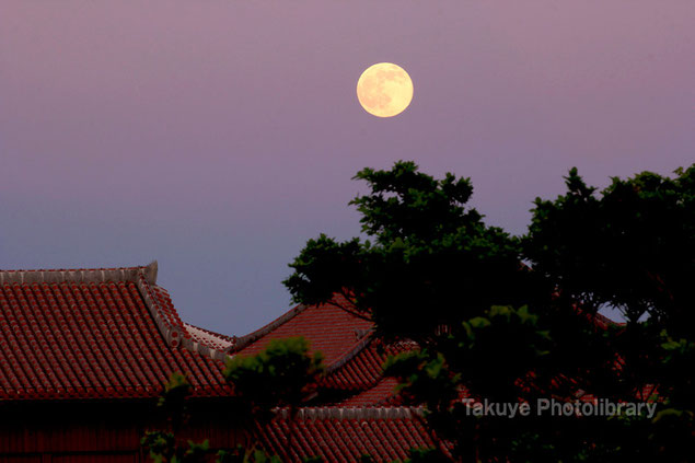 沖縄の写真 満月と首里城 沖縄の風景