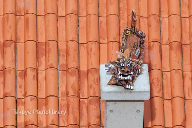 シーサー写真 赤瓦屋根の上でピース!