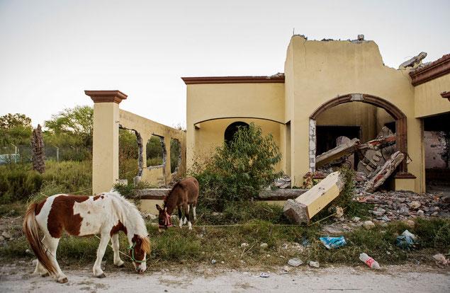 大虐殺から6年たっても、犯行現場を片づけようとはだれもしていない。いまも、何区画も廃墟となったままである。残骸の間に、人々の暮らしの名残を示すものが散在する。