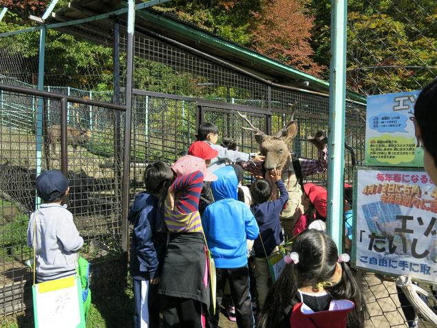 栗山町 動物園