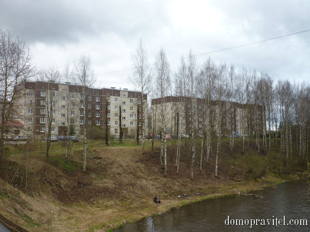 на фото: поселок Лукаши, ул. Ижорская