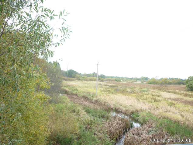 Река Орлинка в Дружной Горке