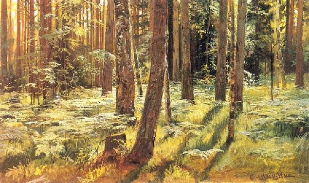"""Шишкин Иван Иванович """"Папоротники в лесу. Сиверская""""  (1883)"""