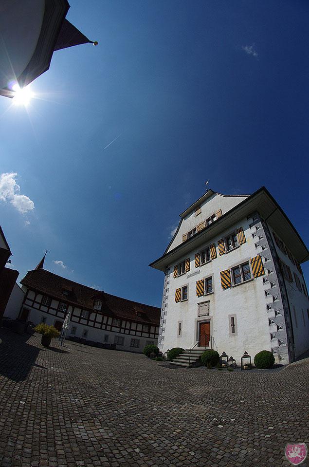 Schloss Wyher Ettiswil Hochzeit Heiraten Wedding DJ Benz
