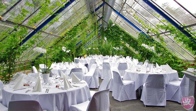 Hochzeit Häusermann Gartenbau Langenthal Hochzeits DJ Benz