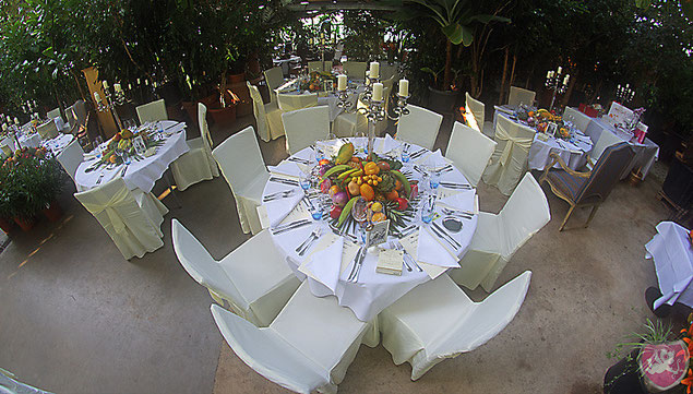 Triibhuus Zürich Hochzeit Heiraten DJ Benz