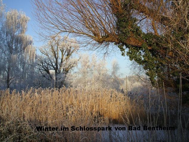 Winter im Schlosspark von Bad Bentheim