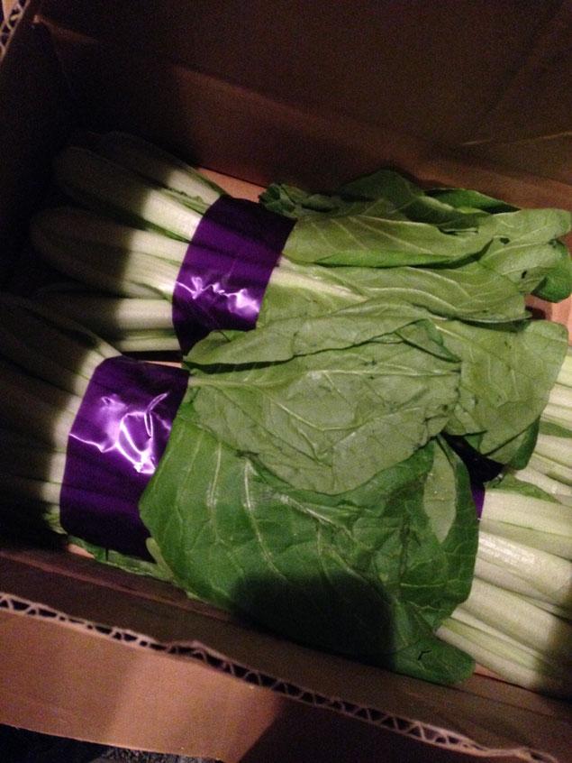 こちらは、芯取菜。江戸野菜です。焼いた椎茸と共にお浸しにしております。前菜の盛り合わせの中の一品です。