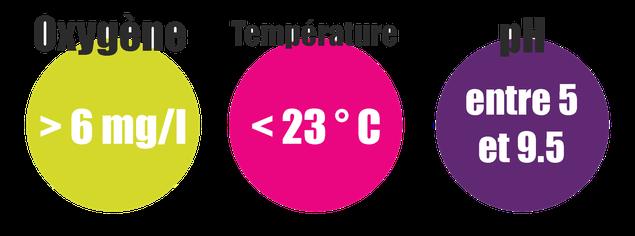 exigences écologiques truite fario oxygène température pH