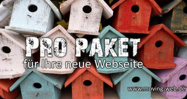 Webseitengestaltung von der Firma movving web aus Wachtberg bei Euskirchen, Swisttal, Rheinabch, Weilerswist, Bornheim, Mechernich und Bad Münstereifel