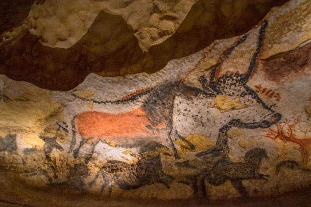 art pariétal la grotte de lascaux cm1 cm2