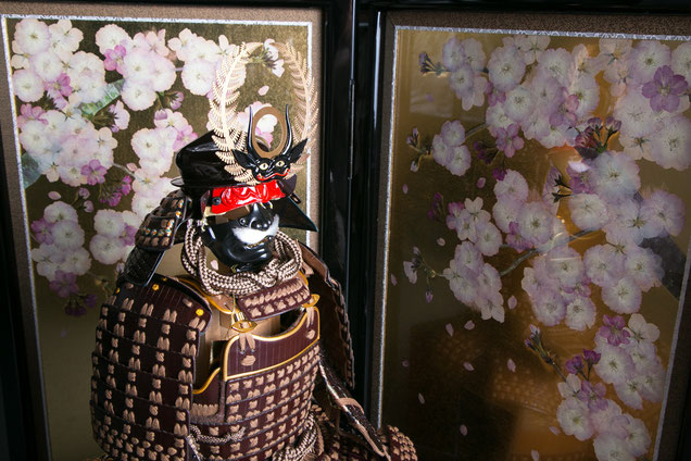 徳川家康公鎧 桜の押し花の金屏風と合わせて
