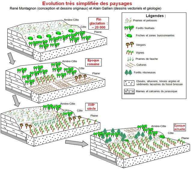 Modifications des paysages depuis 20 000 ans. Sources: Alain Gallien et René Montagnon.