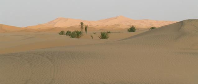 circuit au sud Maroc vers le désert