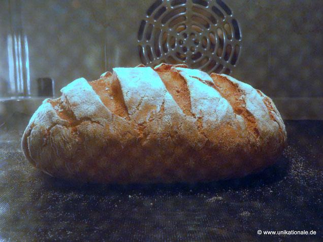Weizensauerteig-Mischbrot im Ofen