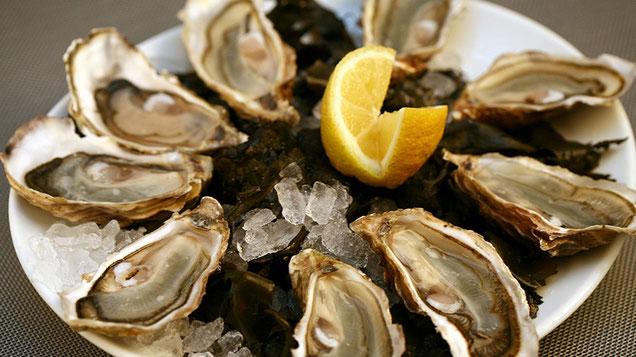 Bretagne Austern aus Cancale