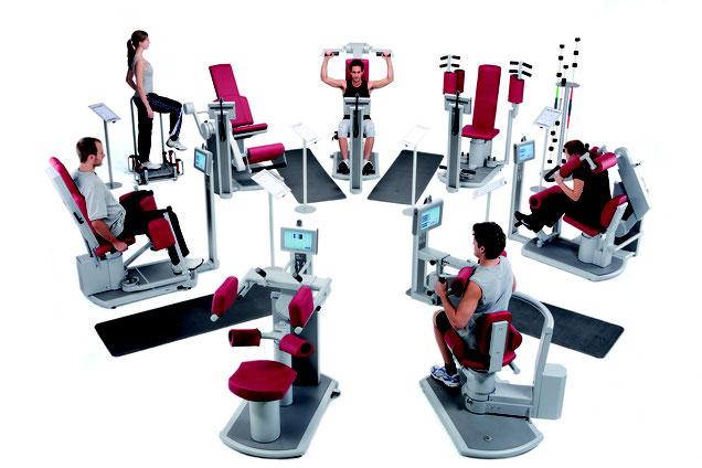verden fitness studio fitnessstudio training blender personal kurse frei krause kurs angebot zirkel zirkeltraining