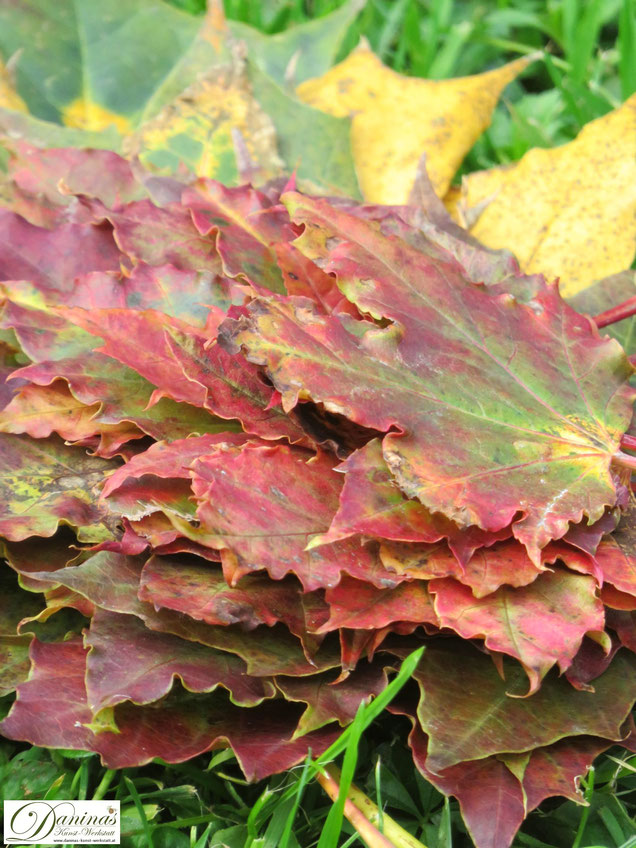 Schöne bunte Herbstblätter für ein kreatives Landart Projekt im Garten oder zum Basteln und Dekorieren