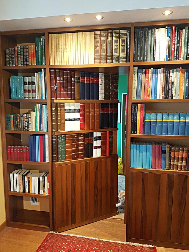 libri finti studio avvocato by Conti Borbone