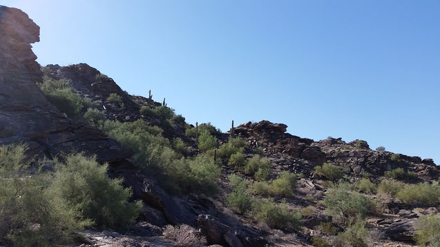 Travel with baby to Phoenix, Arizona - Hiking