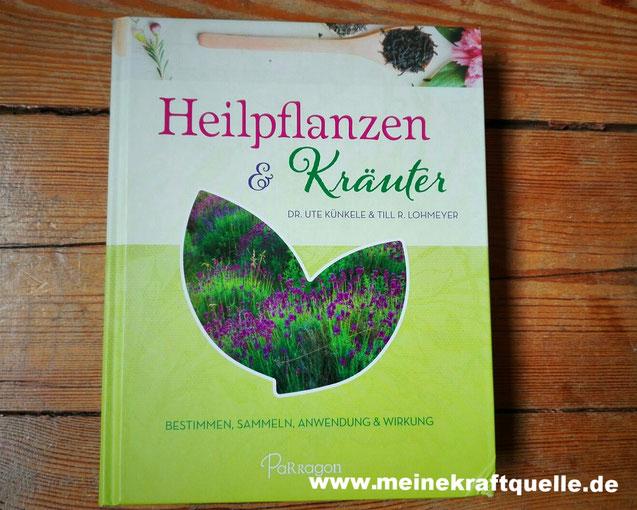 Wildkräuter, Heilpflanzen, Kraftquelle, Kräuterkunde für Anfänger, Freitagslieblinge
