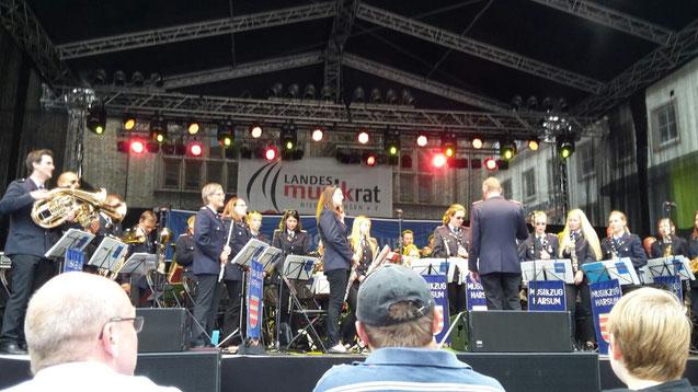 Tag der Niedersachsen 2015 in Hildesheim, Konzert auf der Bühne am Marktplatz