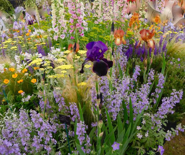 Chelsea Flower Show London