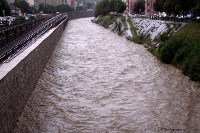 Hochwasser des Wienfluss am frühen Vormittag des 23. Juni 2009