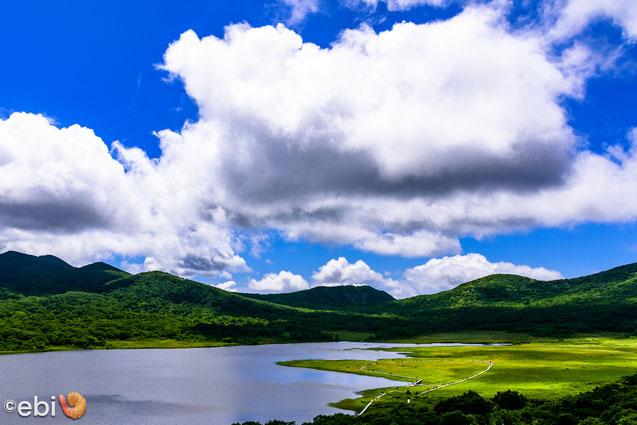 雄国沼湿原