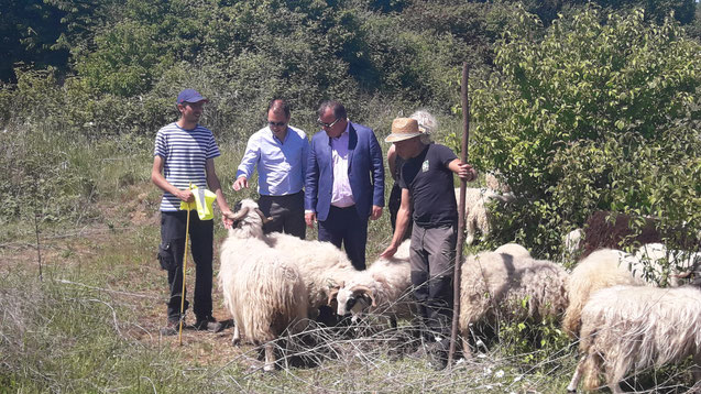 Mr Olivier Marcouyoux (Jardinier Berger), Mr Demassiet (Maire adjoint en charge de l'Environnement), Mr Benassaya (Maire de la ville de Bois d'Acy), Mr Gaël Changicy.