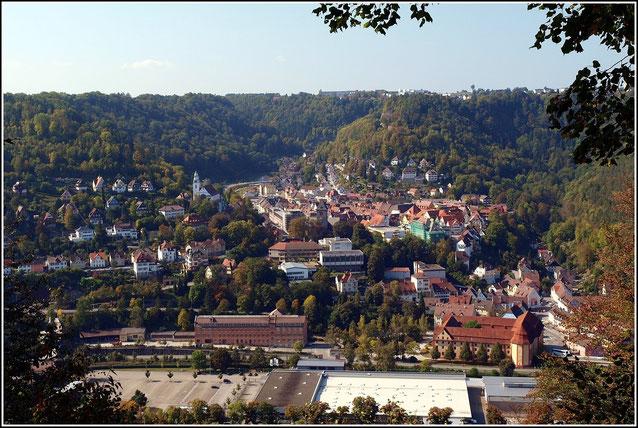 Blick auf Oberndorf am Neckar