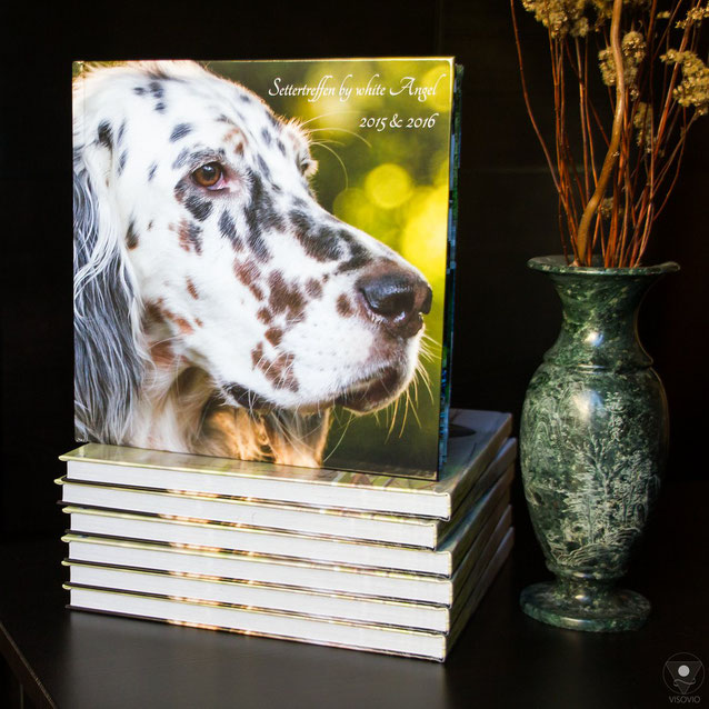 Setterbuch, Settertreffen, by white Angel, English Setter